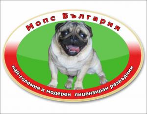 Видео галерия Мопс България