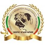 Снимки на кучета порода Мопс