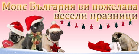 mops.bg-christams-banner
