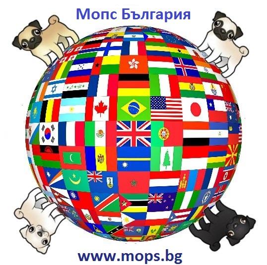 Доволни клиенти от Мопс България